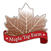 maple tap farm